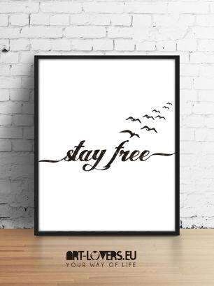 stay_free_lr-01-01